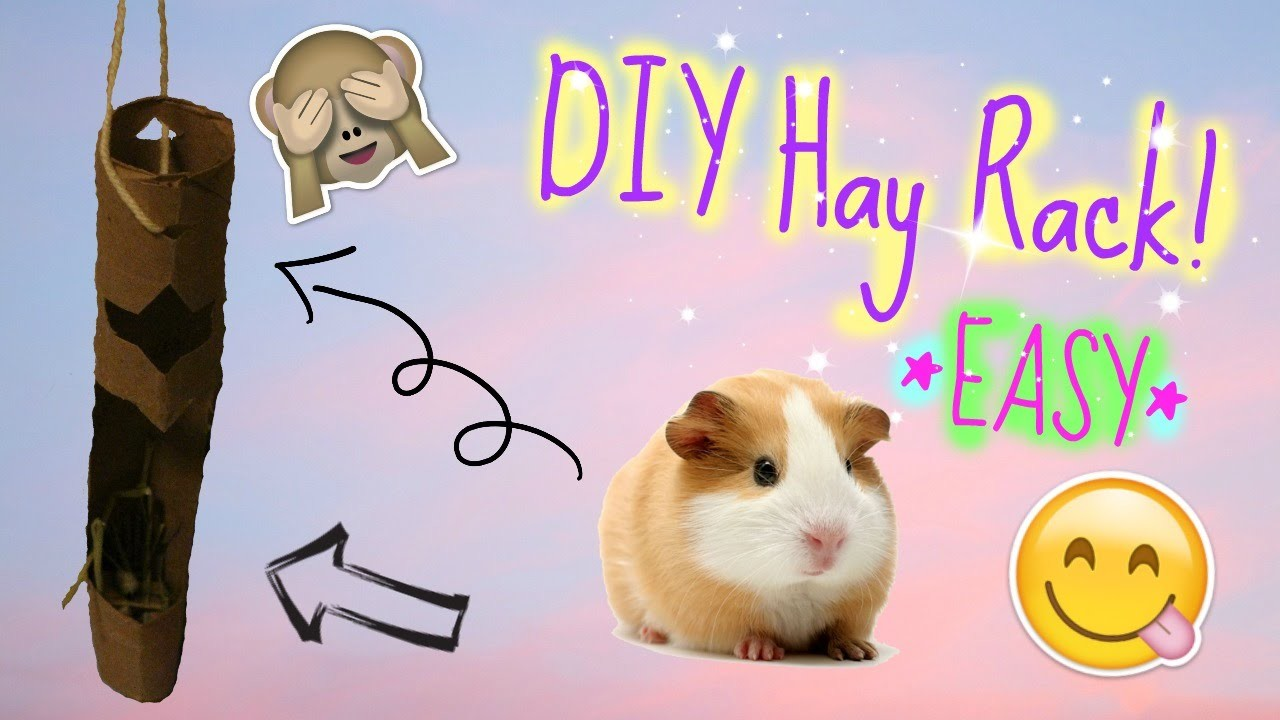 DIY  Guinea Pig Hay Rack Tutorial *EASY* | PiggyPalace
