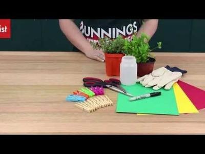 How To Make A Peg Pot Plant  - DIY At Bunnings