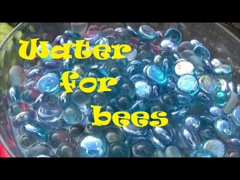 Bee water bowl - Super easy DIY