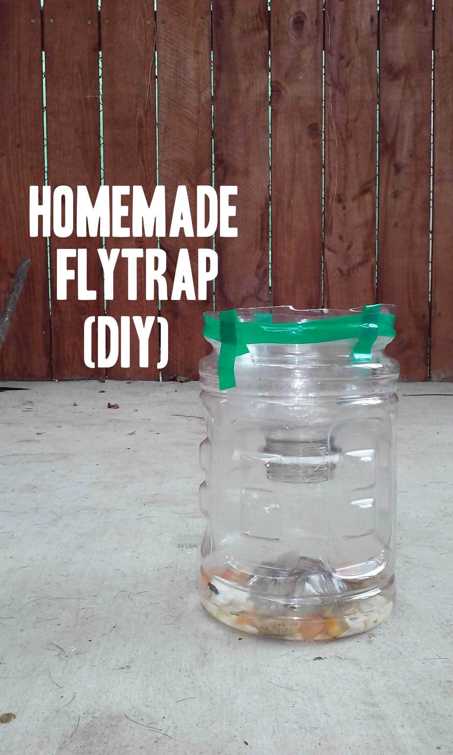 Easy Homemade Fly & Wasp Trap.  DIY, How To