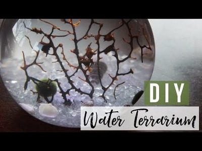 DIY Water Terrarium | Wit & Whimsy