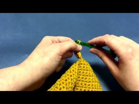 Beginning Crochet: Adding a Button Hole