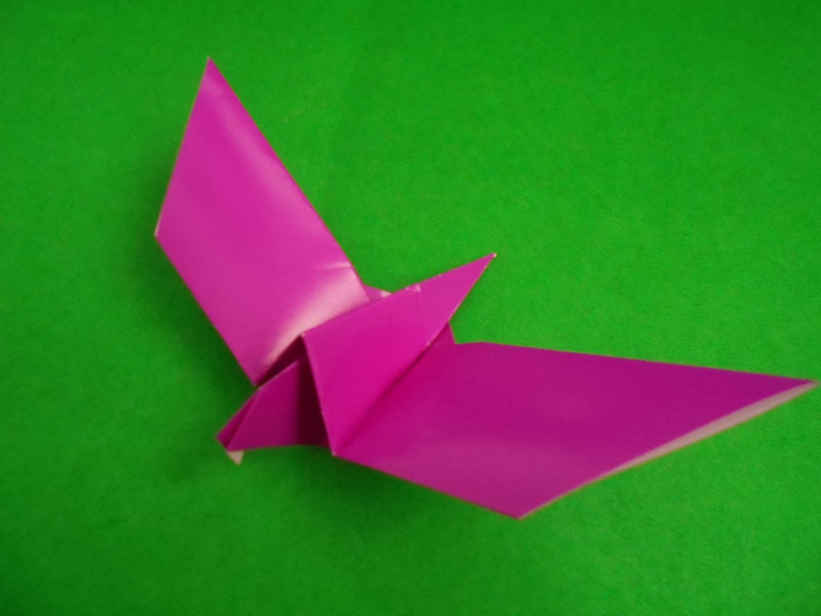 How To Make Origami Animals | Easy Origami Seagull | Origami Bird