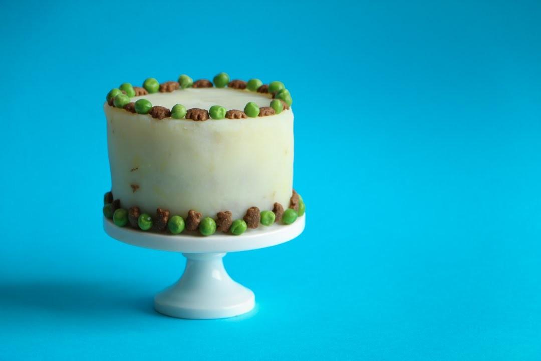 How to make a Pet B-day Cake ♥ Chokolat Pimienta