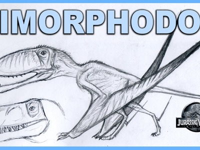 Dimorphodon Jurassic World vs REAL Dimorphodon How To REALLY Draw Dimorphodon