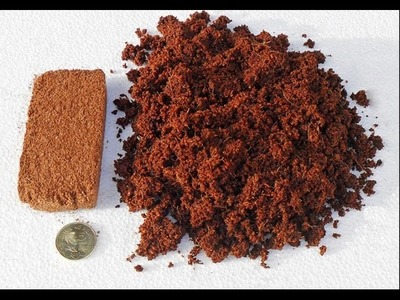 How To Use Coco Peat   How To Make Bonsai Soil (Urdu.Hindi)