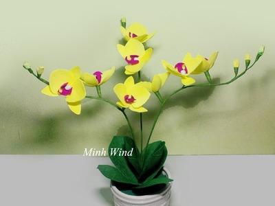 Orchid paper flower - Làm hoa lan hồ điệp giấy nhún