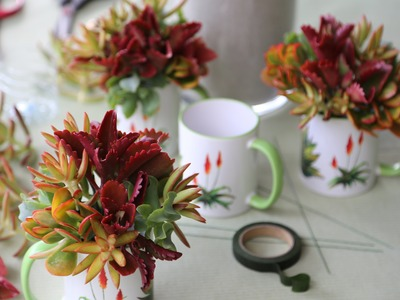 How to Make a Succulent Mug Bouquet