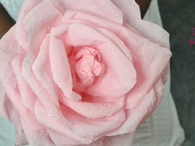 How to make a Giant Rose using Crepe Paper.