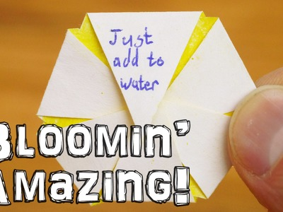 Just Add Water - Blooming Flower Trick