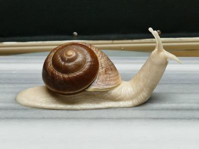 Sculpting a Snail (body) - Polymer Clay