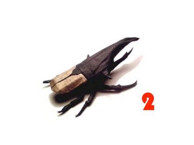 Origami Hercules beetle by Manuel Sirgo - Part 2