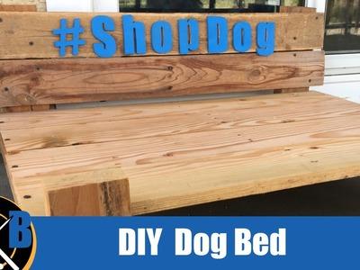 BUILD :: Dog Platform Bed