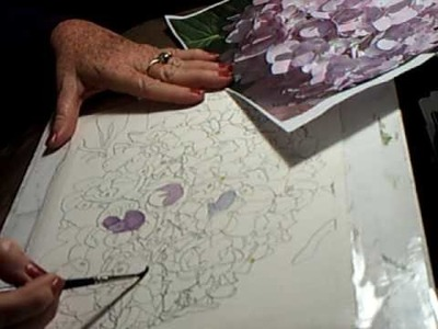 """Watercolor Instruction by Cia Price, """"Pink Hydrangea"""" Clip 1"""