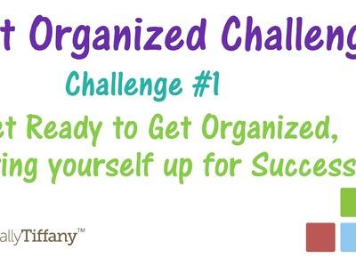 Challenge #1 - Get Ready to Get Organized, Summer 2014