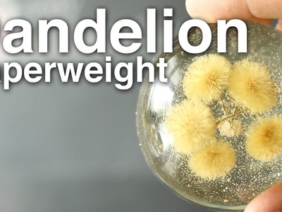Dandelion Paperweights!! + Giveaway!! [CLOSED]