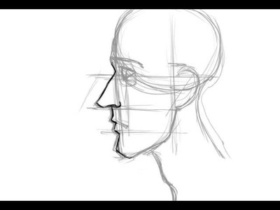 How to Draw the Face in Profile