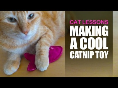 How to Make a Catnip Toy for Your Cat