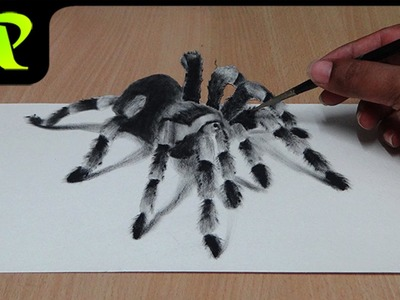 How to Draw 3D Spider - Anamorphic Illusion | Tarantula | Trick Art
