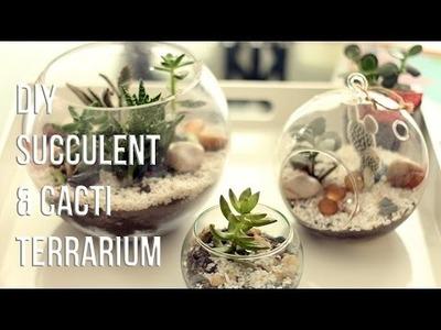 HOW TO MAKE  SUCCULENTS & CACTI TERRARIUM (DIY). CÓMO HACER UN TERRARIO