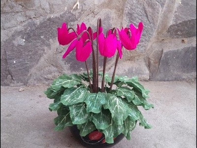 Cyclamen flower with crepe paper - craft tutorial