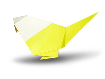 How to fold an Origami Bird
