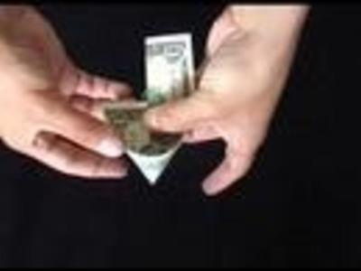 Money Origami Peacock
