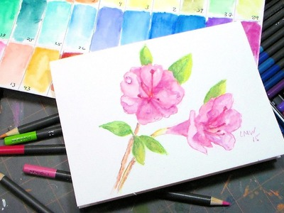 Azalia Painting Tutorial and Fantasia Watercolor Pencil Review & Demo