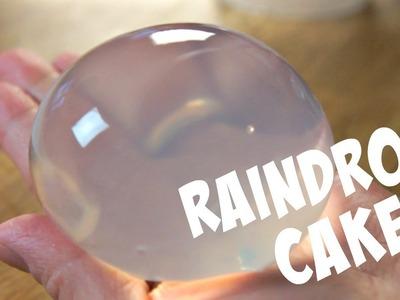RAINDROP CAKE Recipe Mizu Shingen Mochi - You Made What?!