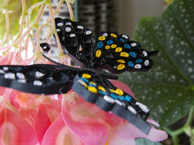 Thuy's Quilling Butterfly
