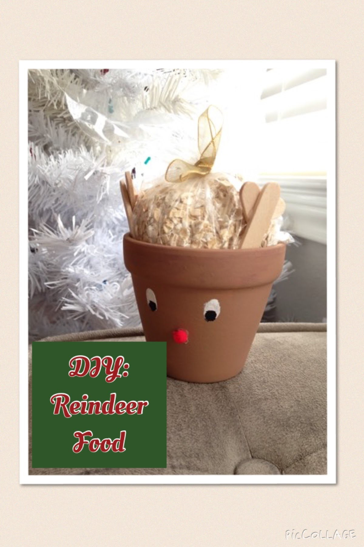 DIY: Reindeer Food