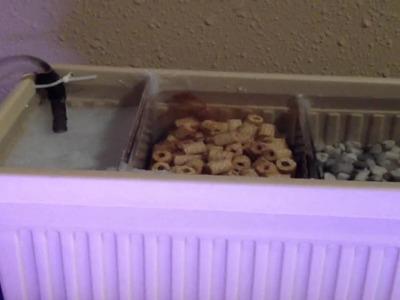 DIY overhead sump filter into hydroponics