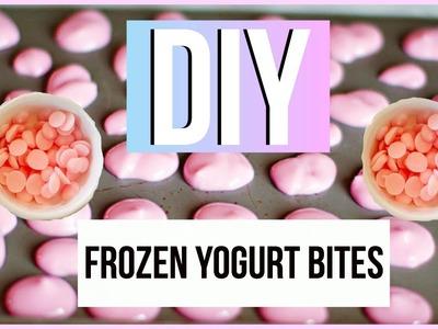 DIY Frozen Yogurt Bites!