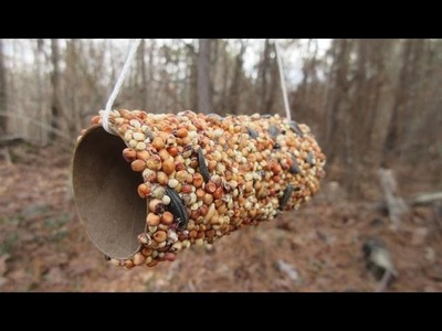 How to make a Bird Feeder for kids - Simple and Easy