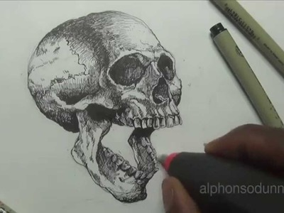 Drawing a Skull with Alphonso Dunn of 'Learn 2 Draw Everything'