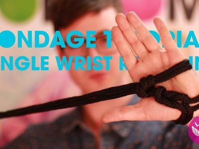 Bondage Tutorial: Single Wrist Restraint