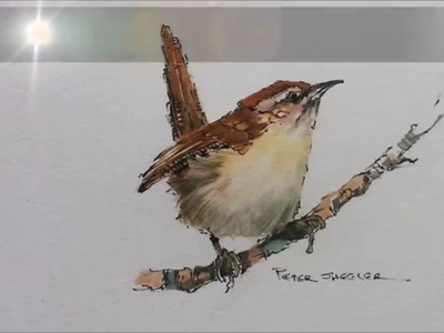 How to paint a bird, Wren tutorial. Quick and easy! With Peter Sheler
