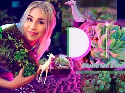 HOW TO: Make DIY Succulent Planters!