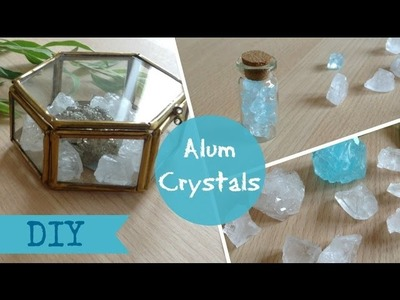 DIY Alum Crystals -  tumblr decor