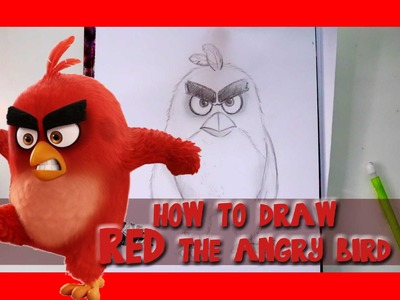 How to Draw RED from Sony Pictures' ANGRY BIRDS - @dramaticparrot