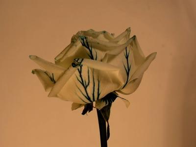 How to colour amazing Blue Rose - Cum sa creezi un trandafir albastru