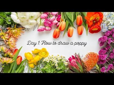 Day 1: How to draw a poppy