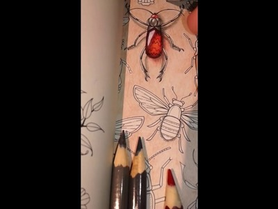 Gem Bugs colouring -3 |How to colour gem bugs in SecretGarden by Johanna Basford