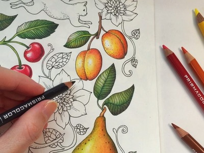 HOW I COLOR AN APRICOT | Blomstermandala Coloring Book | Coloring With Colored Pencils