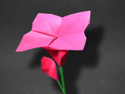 Origami: Spiral Flower ( Wellington W ) - Instructions in English ( BR )