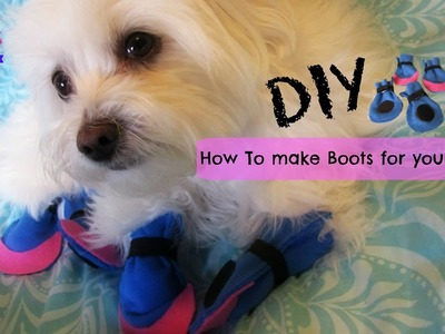 How to make boots for dogs, DIY, NO SEWING, Coton de tulear I Lorentix