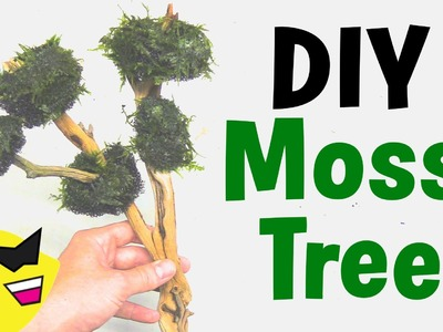 How To Make: DIY Moss Tree for Aquarium - X-mas Moss Tree
