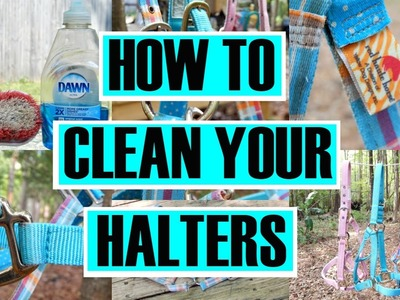 How to Clean Your Halters || simplyequine27
