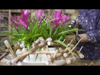 Pink Tillandsia Design | Flower Factor How to Make | Powered by United Bromeliad Growers