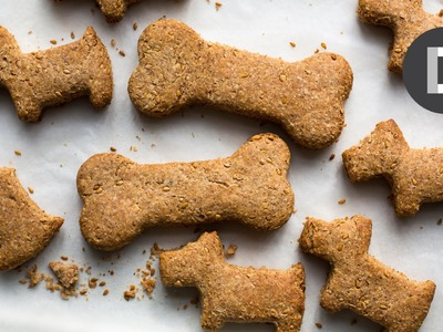 How to make.  Dog Biscuits! Feat. MAX THE DOG!